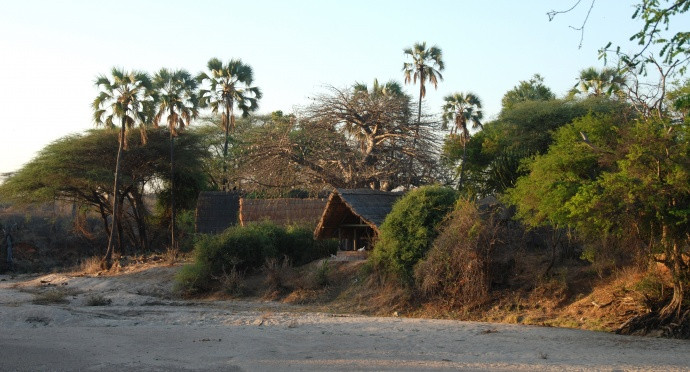 Photo of Mwagusi, Ruaha National Park