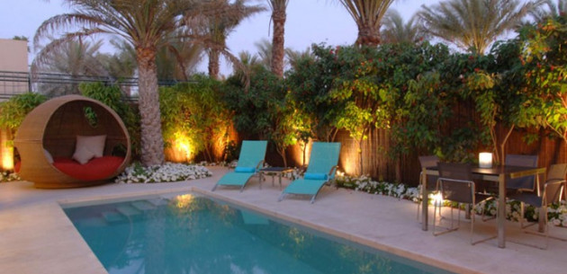 Photo of Desert Palm
