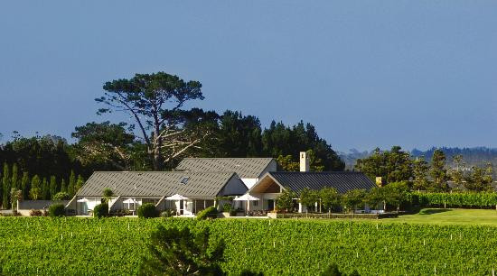Photo of Takatu Lodge & Vineyard