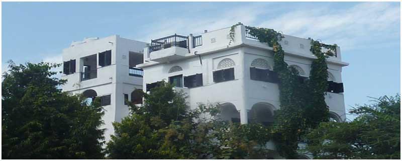 Photo of Dia Home