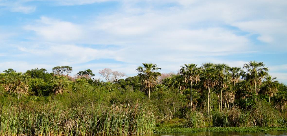 Photo of Corrientes Province