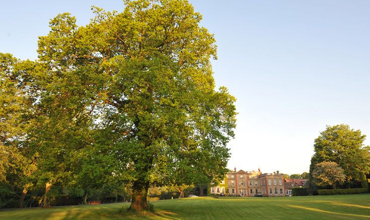 Photo of The Elms