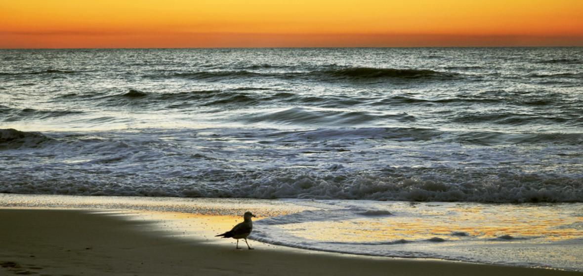 Photo of Naples, Florida