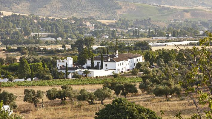 Photo of Molino del Arco