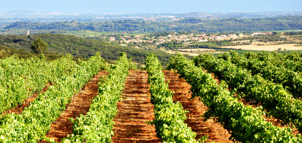 Photo of Languedoc Roussillon