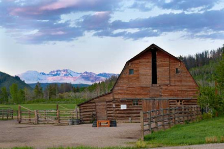 The Home Ranch