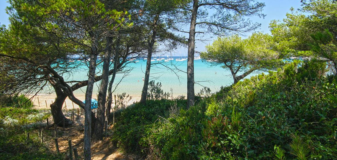 Photo of Ile de Porquerolles