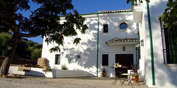 Photo of Casa Olea