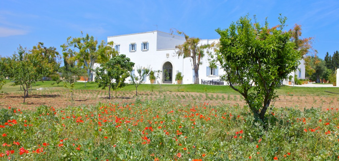 Photo of Masseria Montelauro