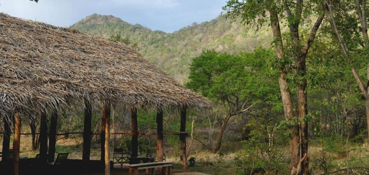 Photo of Tree Tops Jungle Lodge