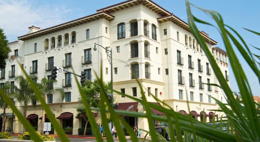 Photo of Canary Santa Barbara