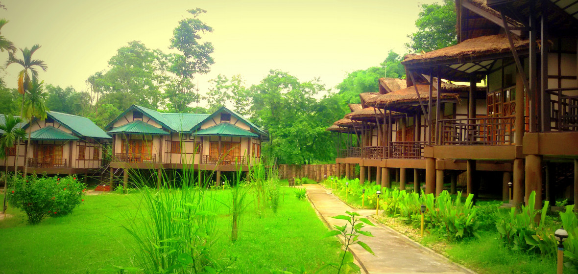 Photo of Infinity Resort Kaziranga