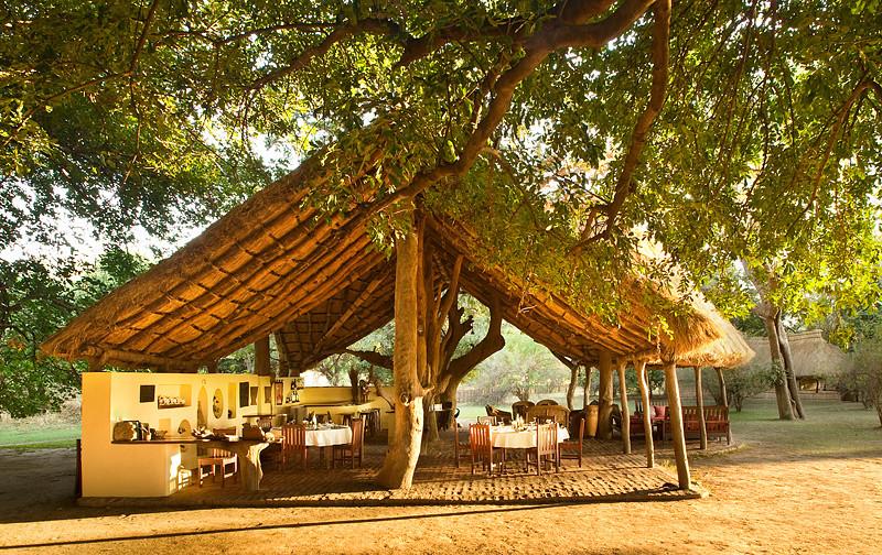 Photo of Tafika Camp