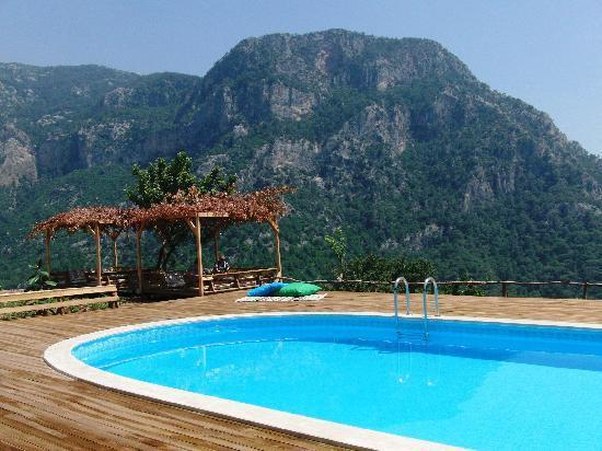 Olive Garden Kabak Turkish Aegean Coast Turkey The Hotel Guru