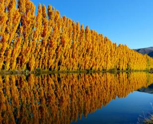 Photo of Otago