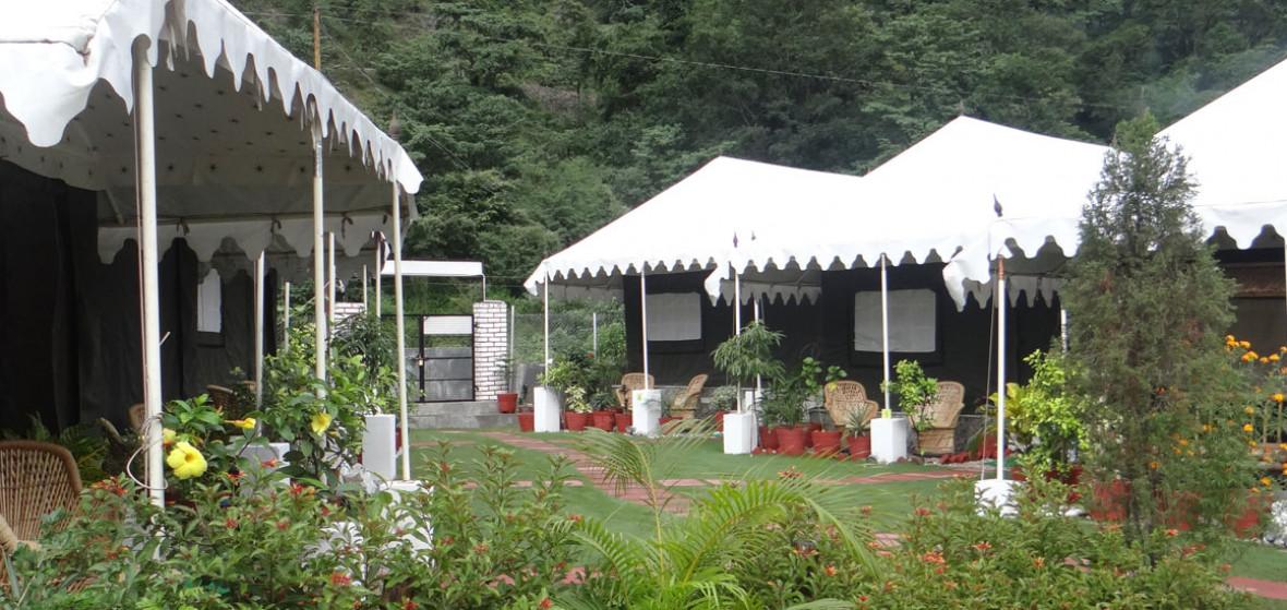 Photo of AquaForest Camp
