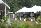 AquaForest Camp