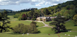 Coming soon - New Pig Hotel in Devon.