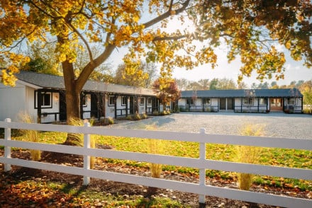 Best places to stay in saratoga springs united states of for Saratoga springs pet friendly hotels