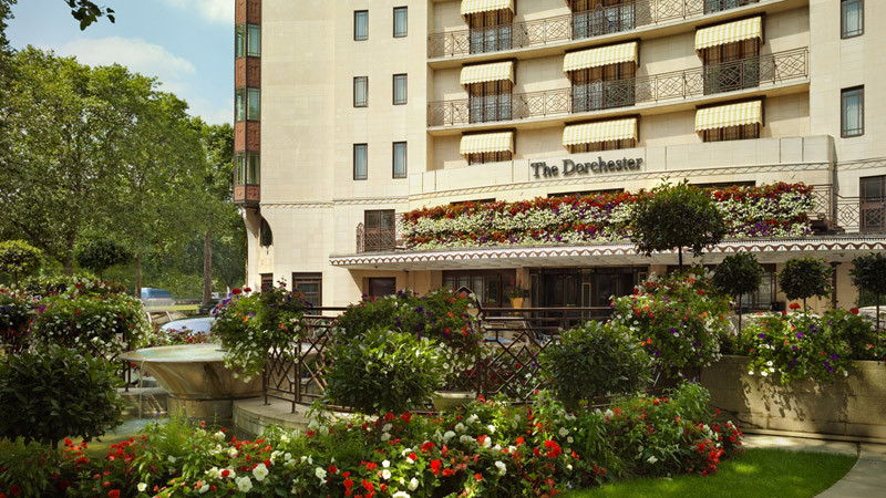 Photo of The Dorchester