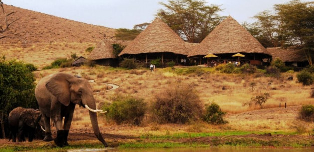 Photo of Tortilis Camp