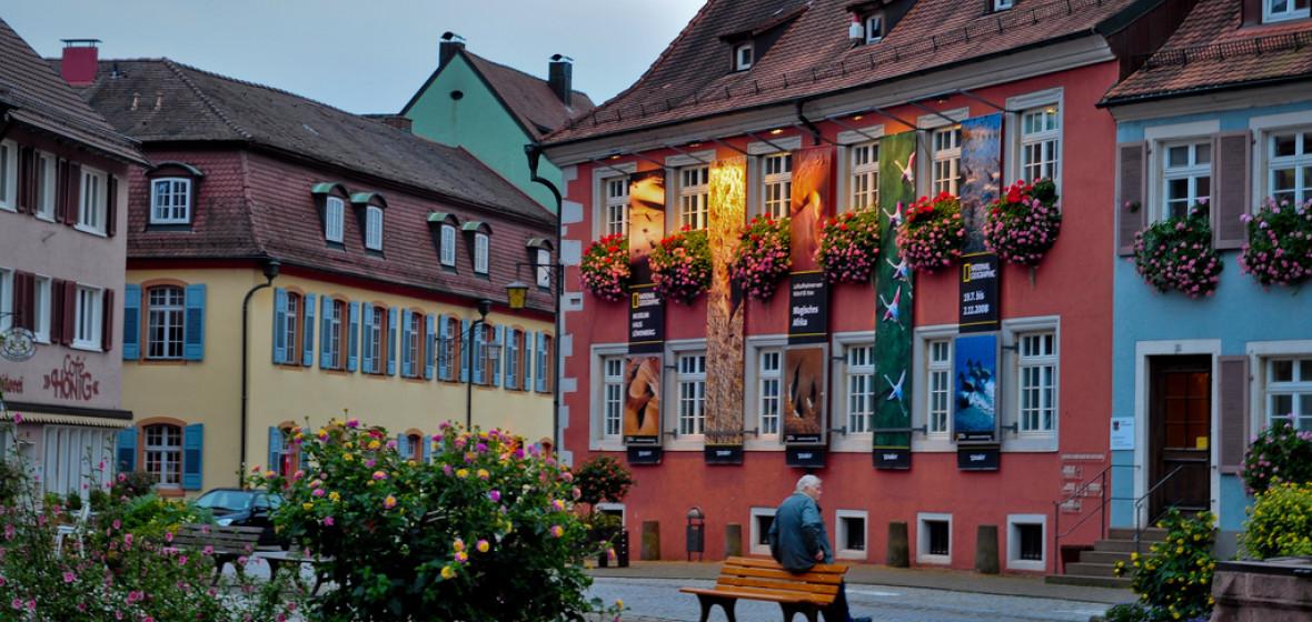 Gurus In Deutschland