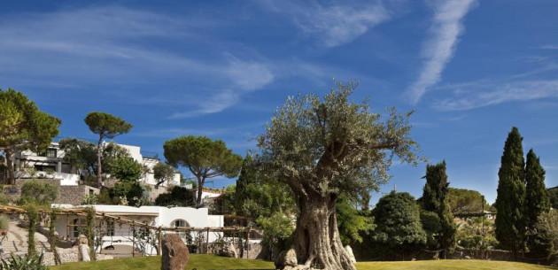 Photo of Garden and Villas Resort