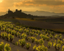 The Ultimate Guide to the Best Wine Hotels in Spain