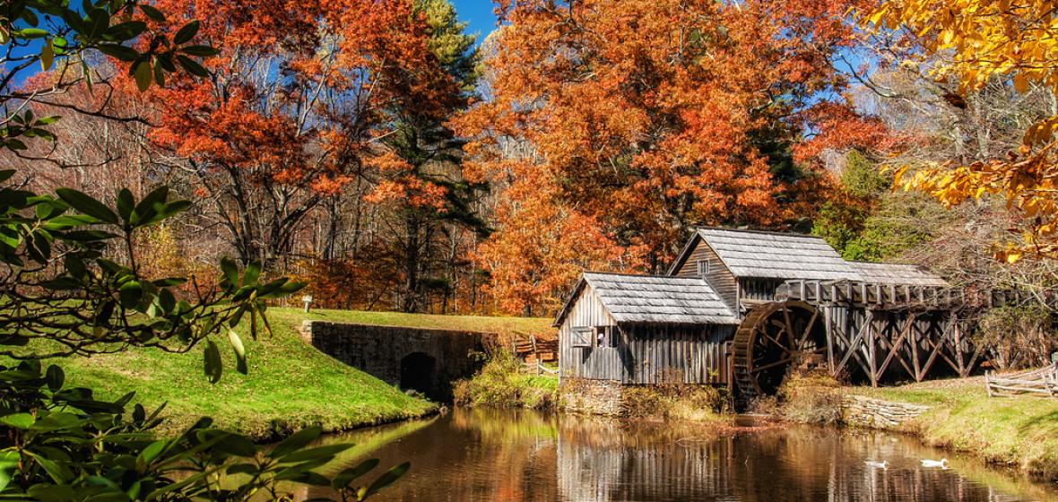 Photo of Virginia