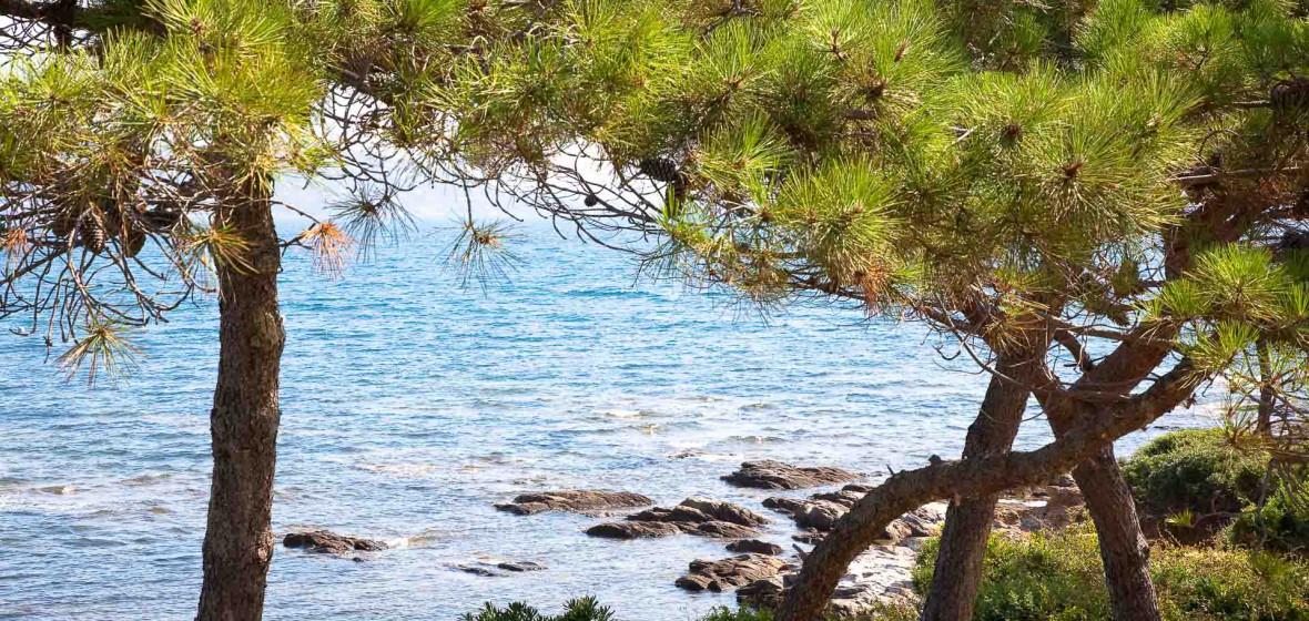 Photo of Sainte Maxime