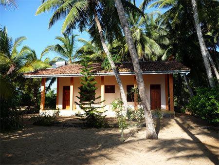 Photo of Mangrove Beach Cabanas