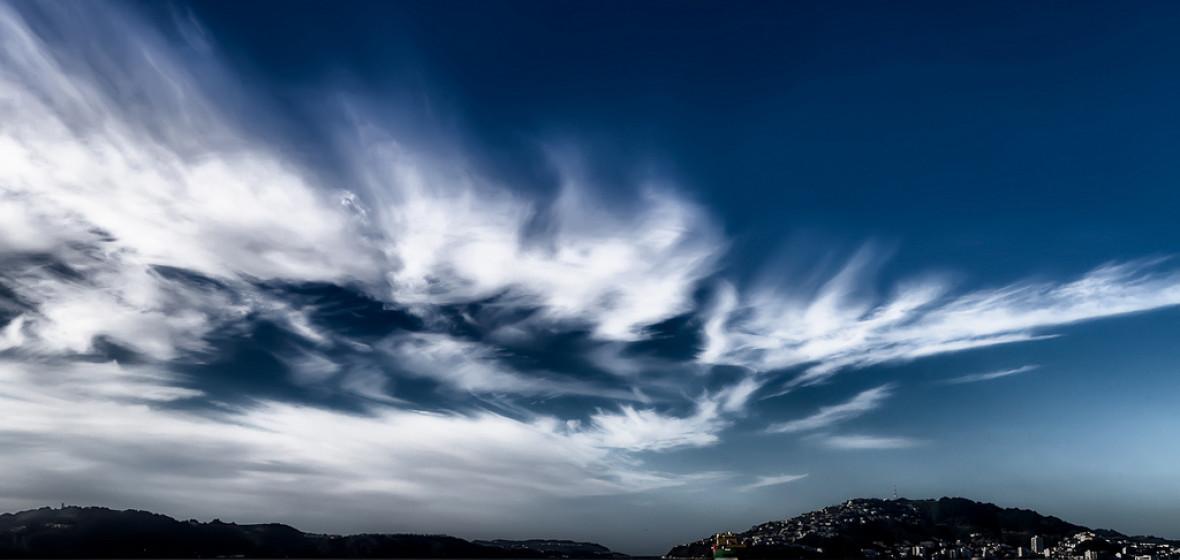 Photo of Wellington