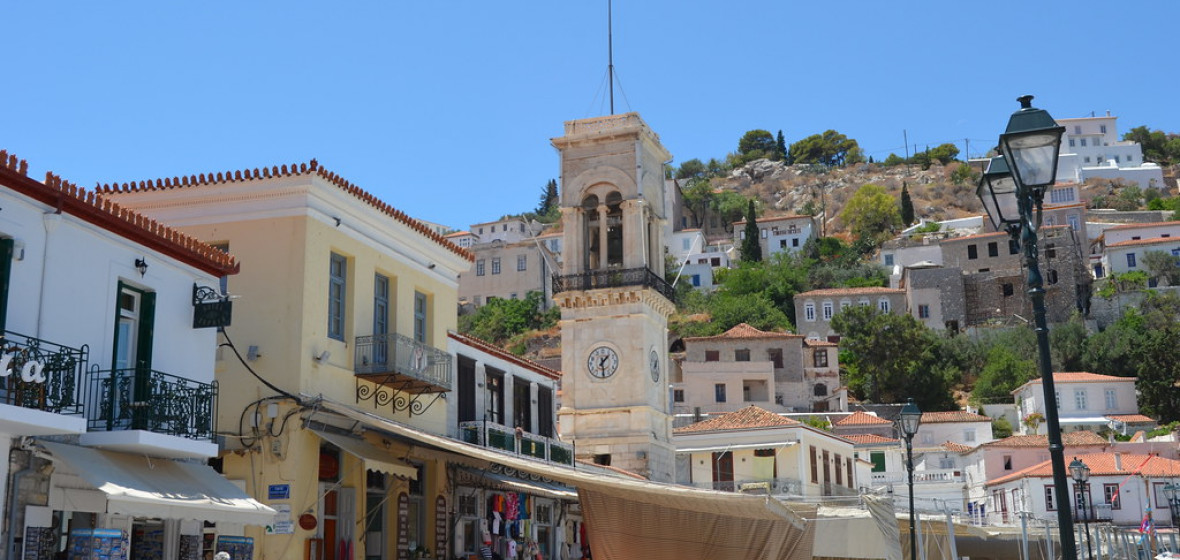 Photo of Hydra