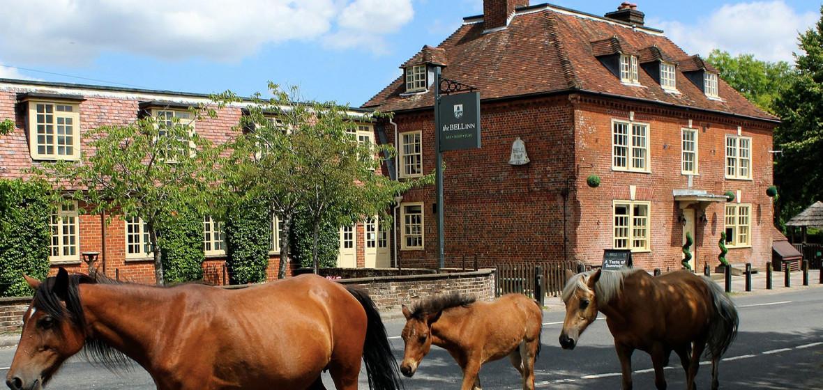 Photo of The Bell Inn