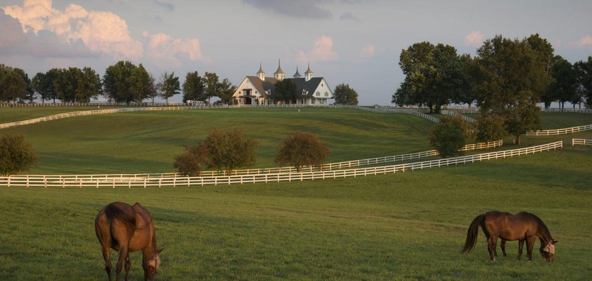 Photo of Lexington