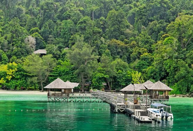 Photo of Bunga Raya