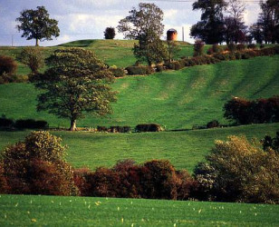 Photo of Leicestershire