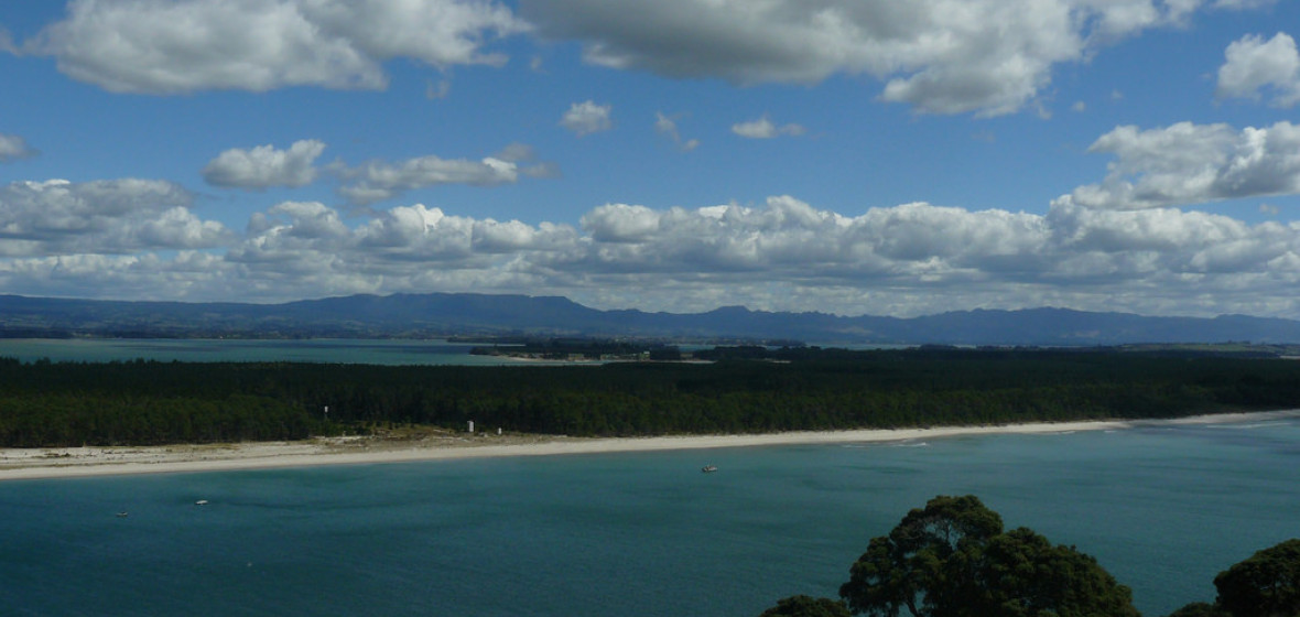 Photo of Matakana