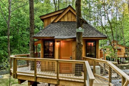 Treehouse Grove