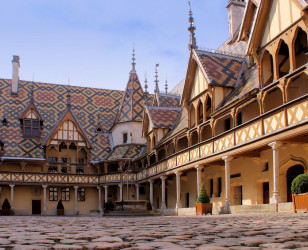 Photo of Burgundy