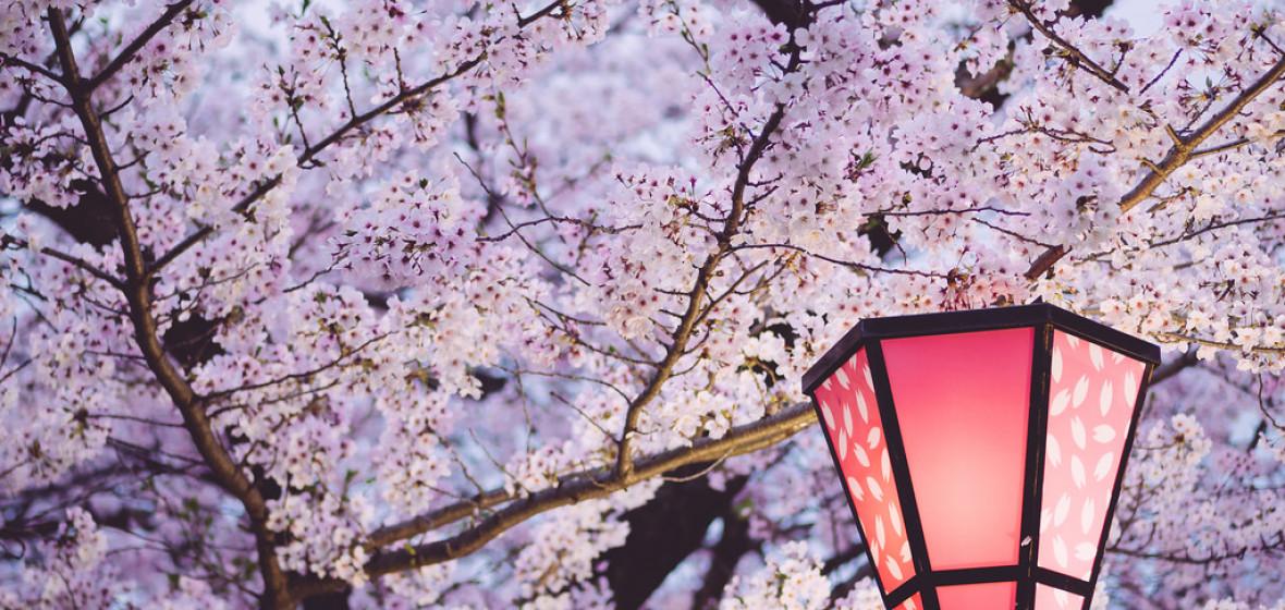 Photo of Osaka