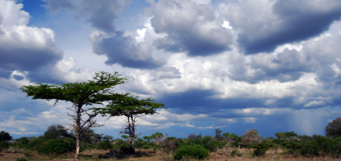 Photo of Tanzania
