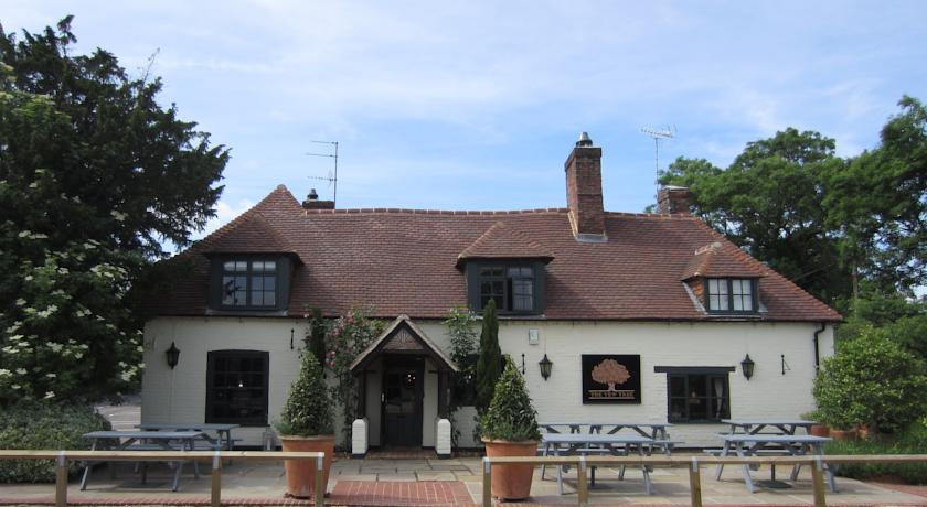 Photo of The Yew Tree