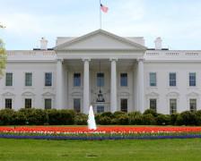 The 5 Best Washington DC Hotels Near the White House