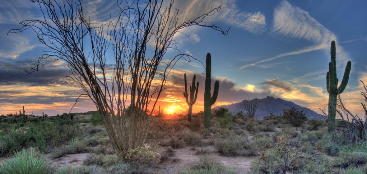 Photo of Arizona