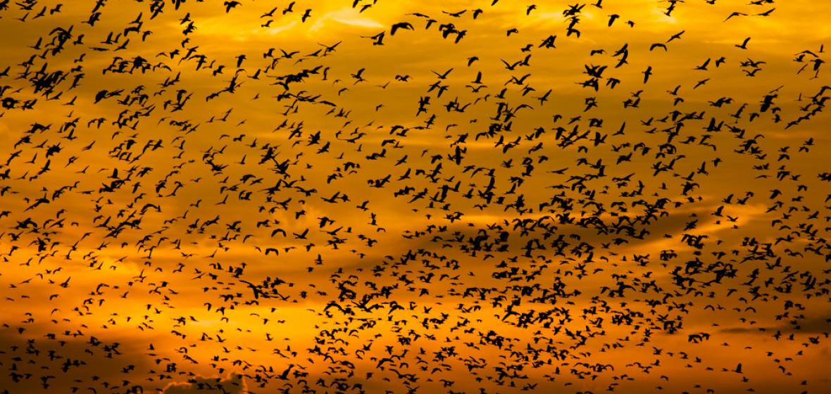 Photo of Kakadu National Park