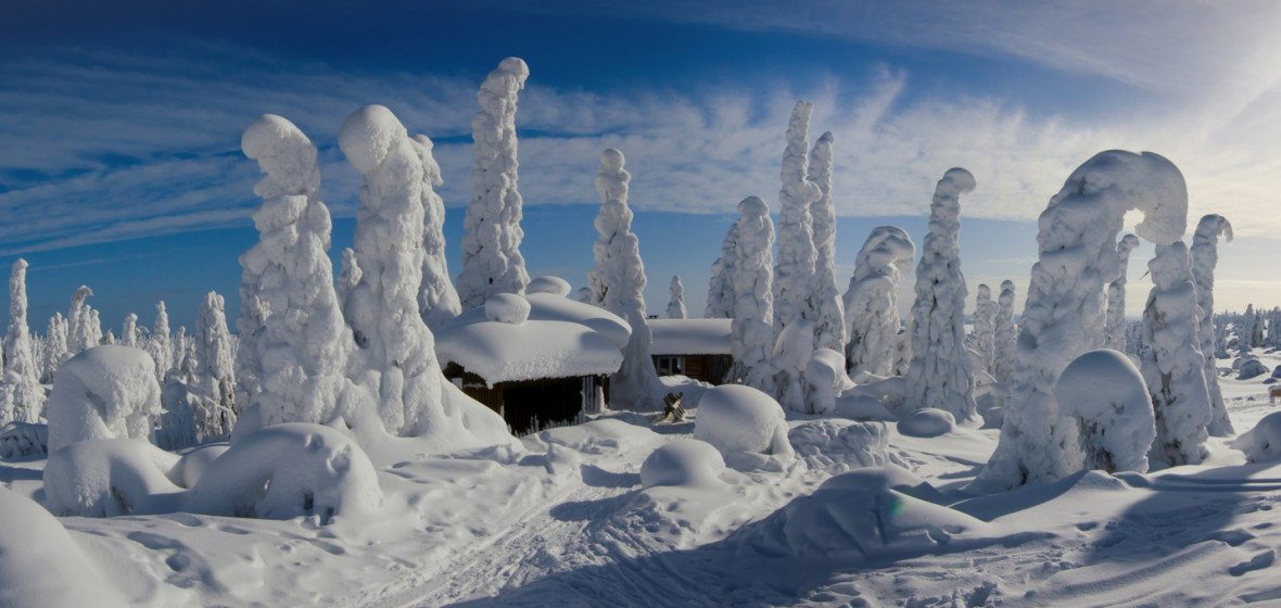 Photo of Lapland