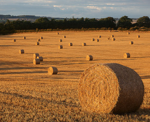 Photo of County Durham