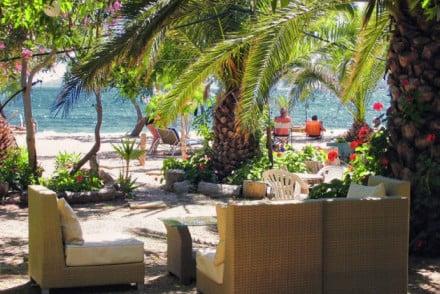 Zoes Resort