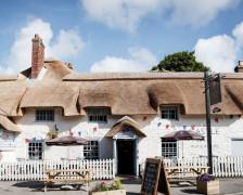 The 5 Best Hotels Near Monkey World, Dorset